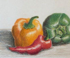 Shading with Colored Pencils -Beginner's Guide
